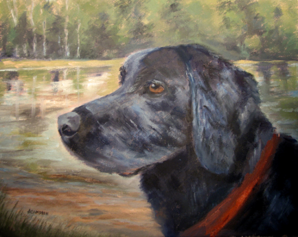 Balck Lab Pet Portrait