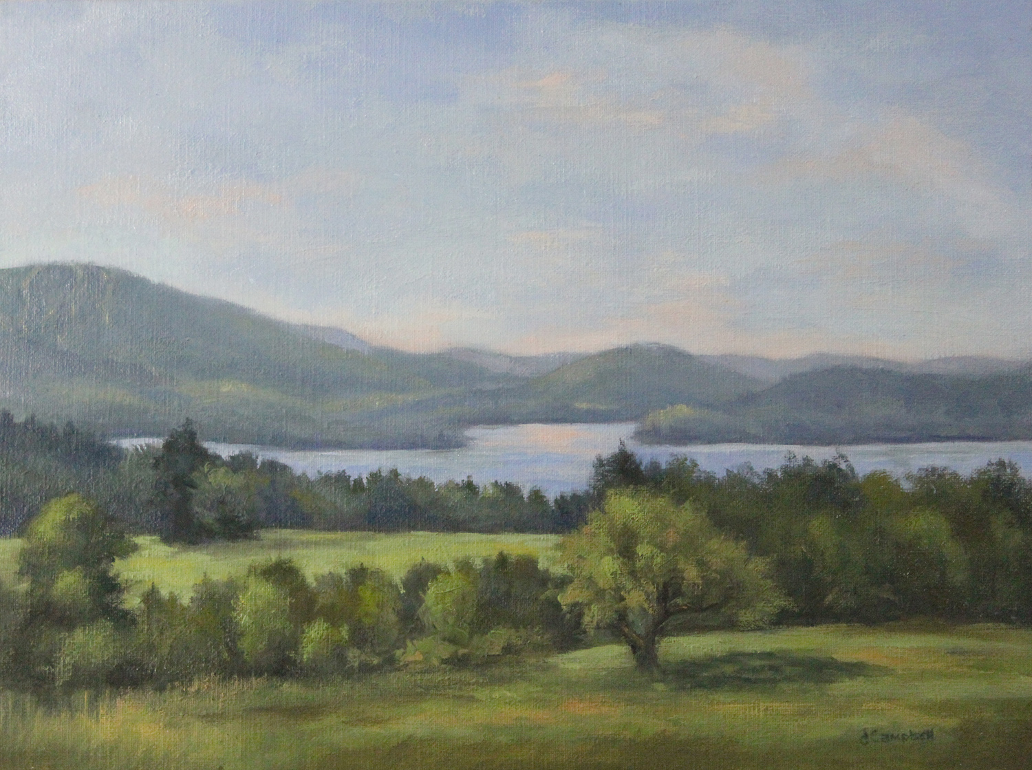 View of Lake Sunapee from Burpee HIll