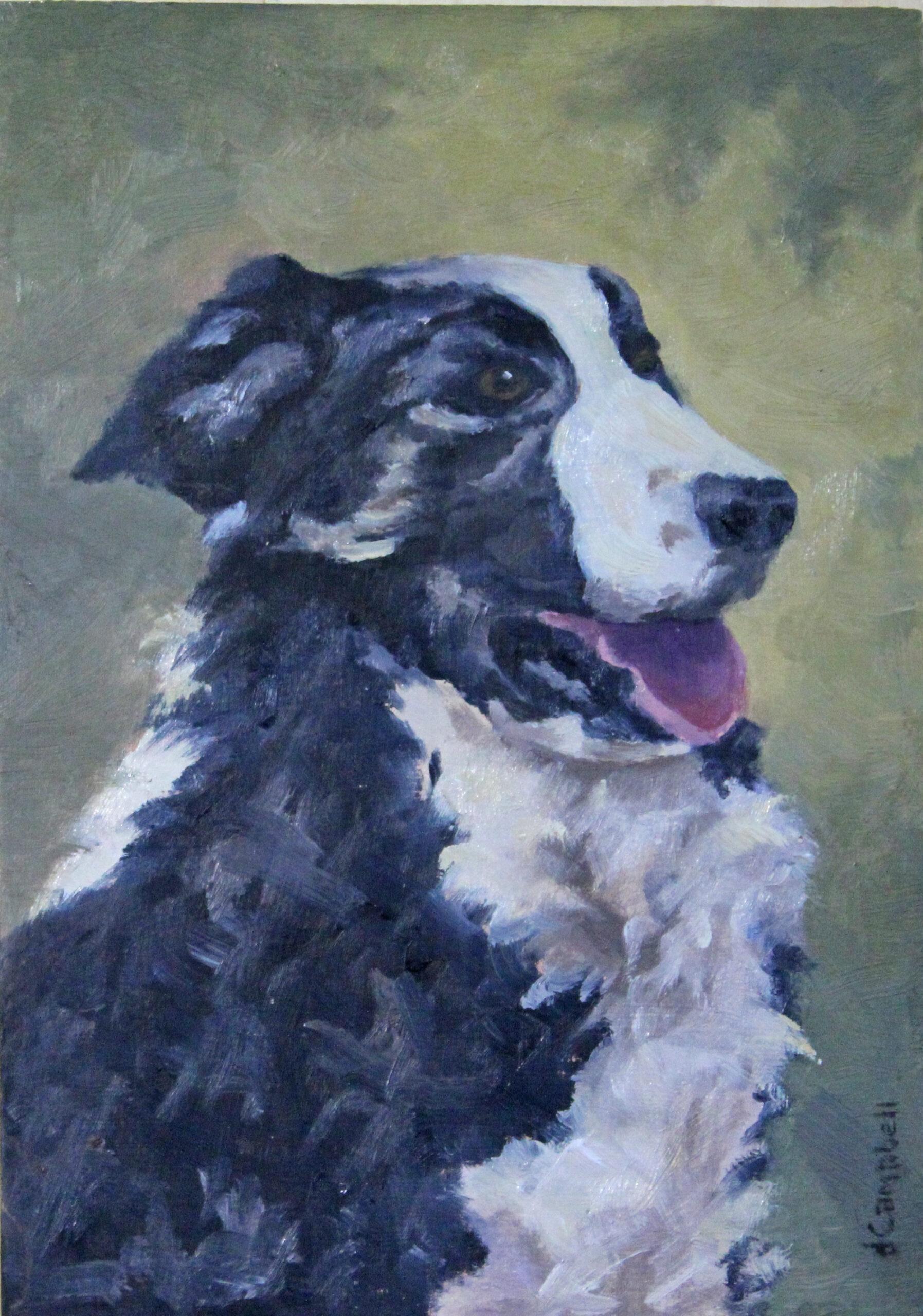 Shep dog protrat